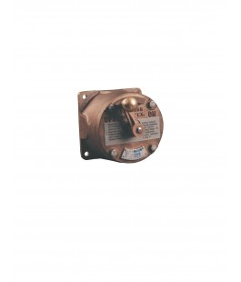 PAULUHN EP833 BRASS CLASS 1 DIV 2 GENERAL ALARM CONTACT SWITCH